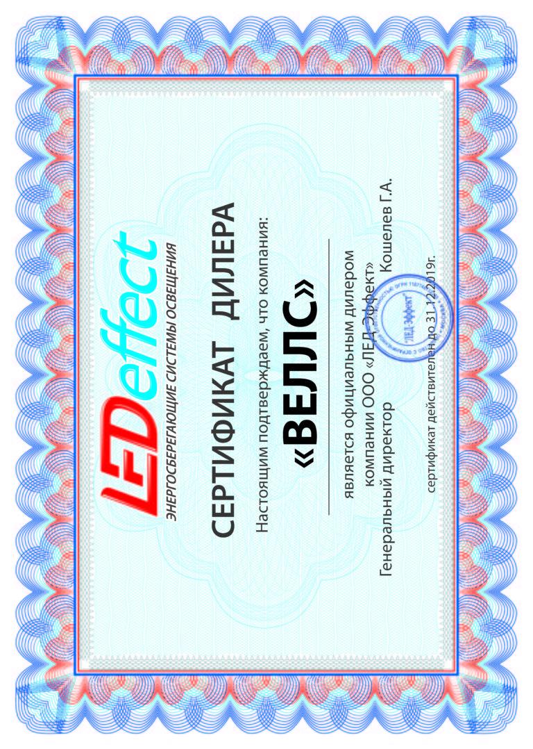 Сертификат ВЕЛЛС 2019 LED EF (гор)